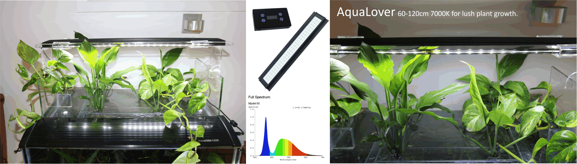 Led S Are The Best Choice For Lighting Your Fishtank